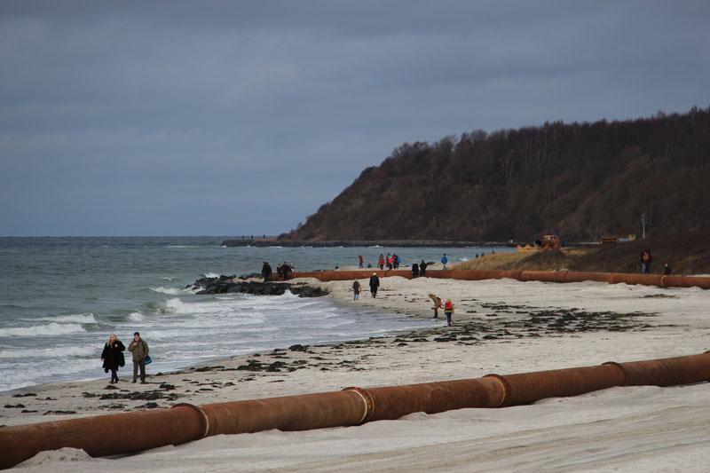 Strandaufspülung auf Hiddensee